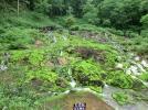 奥草津のチャツボミゴケ公園